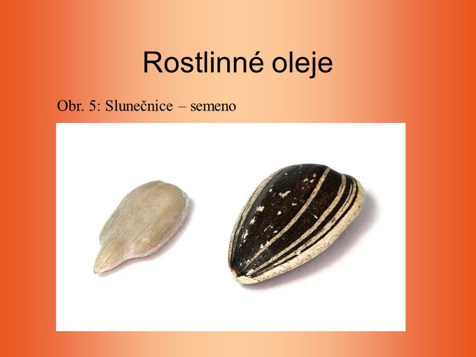Rostlinné oleje Obr. 5: Slunečnice – semeno
