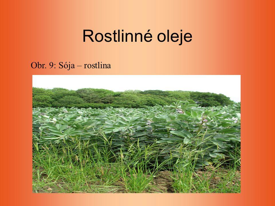 Rostlinné oleje Obr. 9: Sója – rostlina