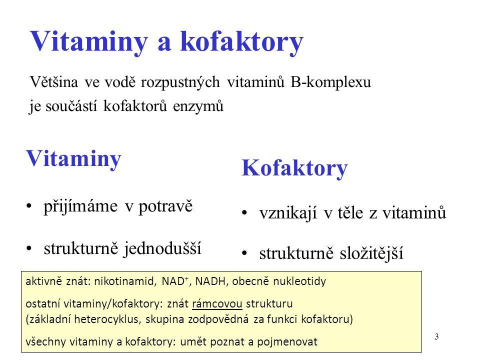 3 Vitaminy a kofaktory Vitaminy přijímáme v potravě strukturně jednodušší Kofaktory vznikají v těle z vitaminů strukturně složitější Většina ve vodě r