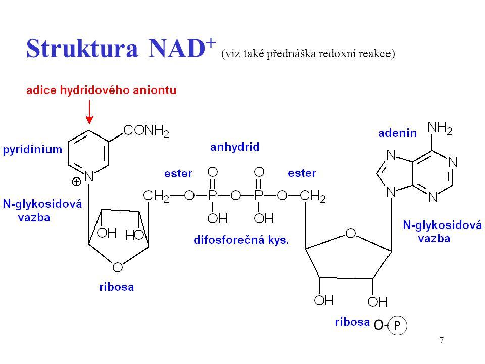 8 Redoxní pár kofaktoru oxidovaná forma NAD + redukovaná forma NADH aromatický kruh aromaticita porušena čtyřvazný dusík trojvazný dusík kladný náboj na dusíku neutrální sloučenina vysoký obsah energie