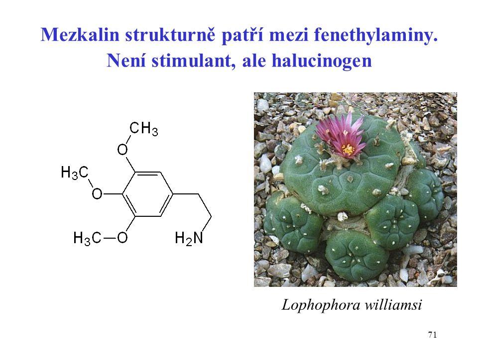 71 Mezkalin strukturně patří mezi fenethylaminy. Není stimulant, ale halucinogen Lophophora williamsi