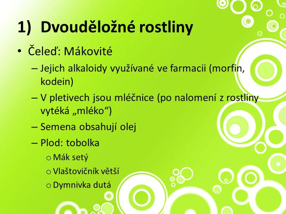 """1)Dvouděložné rostliny Čeleď: Mákovité – Jejich alkaloidy využívané ve farmacii (morfin, kodein) – V pletivech jsou mléčnice (po nalomení z rostliny vytéká """"mléko ) – Semena obsahují olej – Plod: tobolka o Mák setý o Vlaštovičník větší o Dymnivka dutá"""