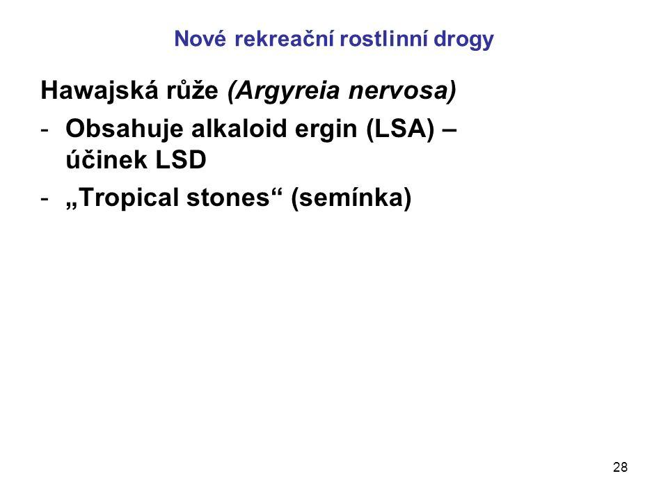 """28 Nové rekreační rostlinní drogy Hawajská růže (Argyreia nervosa) -Obsahuje alkaloid ergin (LSA) – účinek LSD -""""Tropical stones (semínka)"""