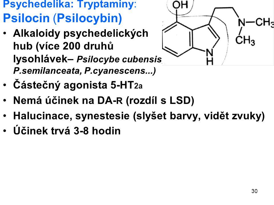30 Psychedelika: Tryptaminy: Psilocin (Psilocybin) Alkaloidy psychedelických hub (více 200 druhů lysohlávek– Psilocybe cubensis, P.semilanceata, P.cyanescens...) Částečný agonista 5-HT 2a Nemá účinek na DA- R (rozdíl s LSD) Halucinace, synestesie (slyšet barvy, vidět zvuky) Účinek trvá 3-8 hodin
