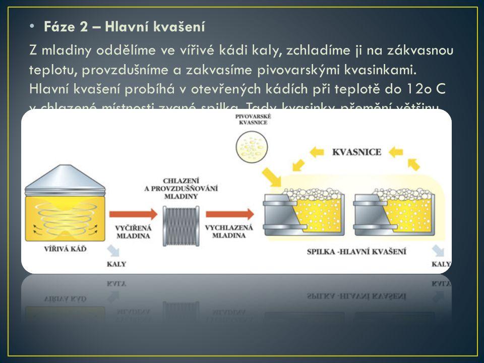 Fáze 3 – Zrání piva Ležácké tanky jsou ležaté nádoby o průměru 240 cm a objemu 60 až 630 hl.