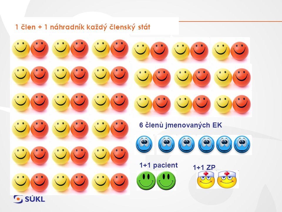 1 člen + 1 náhradník každý členský stát 6 členů jmenovaných EK 1+1 pacient 1+1 ZP
