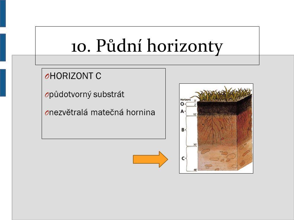 10. Půdní horizonty O HORIZONT C O půdotvorný substrát O nezvětralá matečná hornina