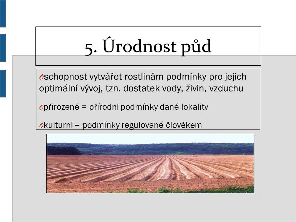 5. Úrodnost půd O schopnost vytvářet rostlinám podmínky pro jejich optimální vývoj, tzn.