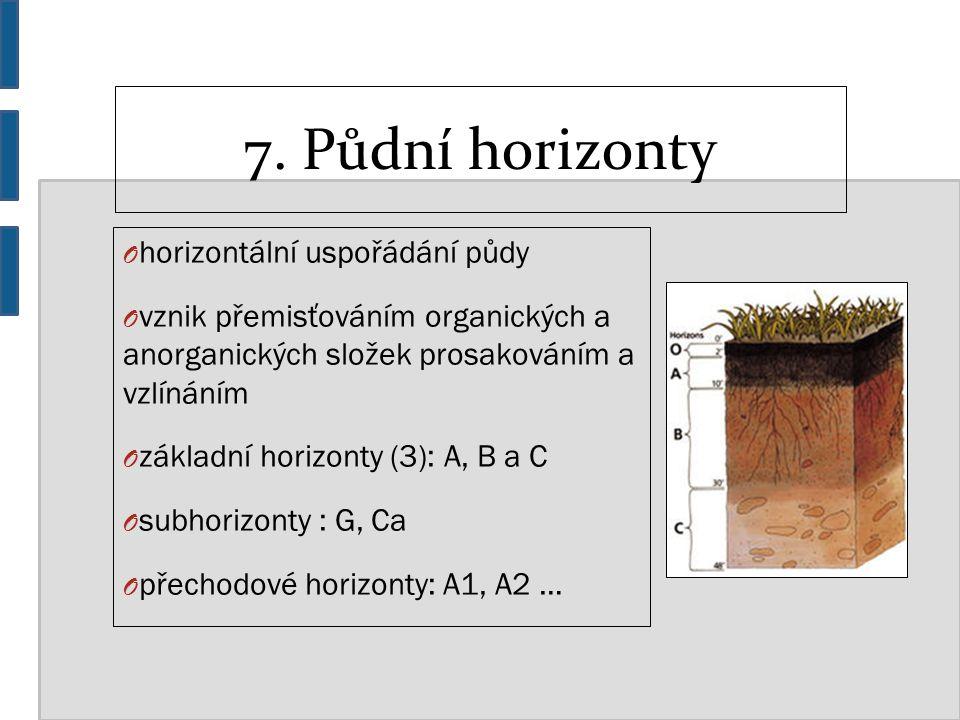 7. Půdní horizonty O horizontální uspořádání půdy O vznik přemisťováním organických a anorganických složek prosakováním a vzlínáním O základní horizon