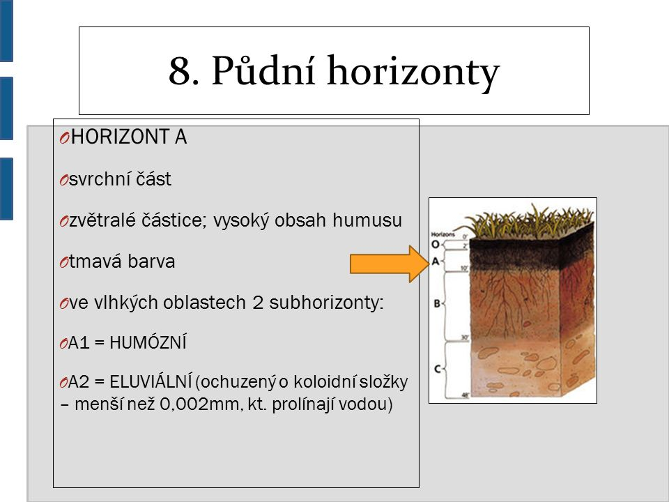 8. Půdní horizonty O HORIZONT A O svrchní část O zvětralé částice; vysoký obsah humusu O tmavá barva O ve vlhkých oblastech 2 subhorizonty: O A1 = HUM