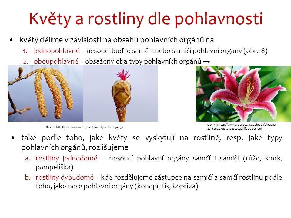 Květy a rostliny dle pohlavnosti květy dělíme v závislosti na obsahu pohlavních orgánů na 1.jednopohlavné – nesoucí buďto samčí anebo samičí pohlavní orgány (obr.18) 2.oboupohlavné – obsaženy oba typy pohlavních orgánů → také podle toho, jaké květy se vyskytují na rostlině, resp.