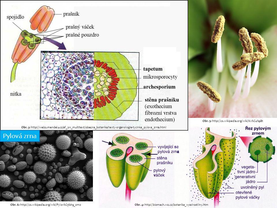 Obr. 3: http://web2.mendelu.cz/af_211_multitext/obecna_botanika/texty-organologie-tycinka_pylova_zrna.html Obr. 4: http://biomach.wz.cz/botanika_vyssi