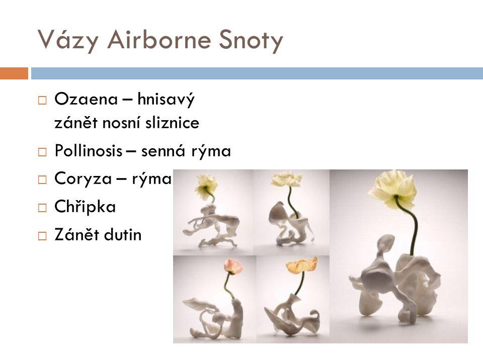 Vázy Airborne Snoty  Ozaena – hnisavý zánět nosní sliznice  Pollinosis – senná rýma  Coryza – rýma  Chřipka  Zánět dutin