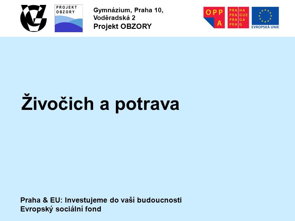 Praha & EU: Investujeme do vaší budoucnosti Evropský sociální fond Gymnázium, Praha 10, Voděradská 2 Projekt OBZORY Živočich a potrava