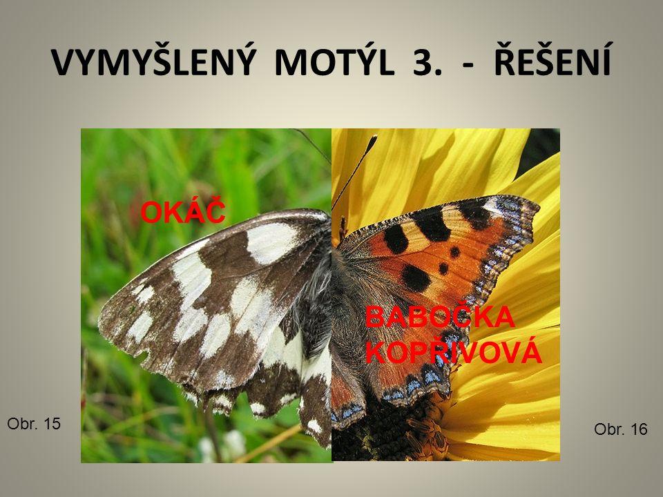 VYMYŠLENÝ MOTÝL 3. - ŘEŠENÍ Obr. 15 Obr. 16 OKÁČ BABOČKA KOPŘIVOVÁ