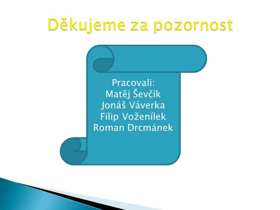 Pracovali: Matěj Ševčík Jonáš Váverka Filip Voženílek Roman Drcmánek