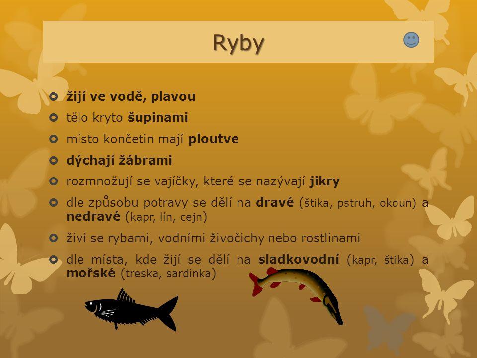 Ryby  žijí ve vodě, plavou  tělo kryto šupinami  místo končetin mají ploutve  dýchají žábrami  rozmnožují se vajíčky, které se nazývají jikry  d