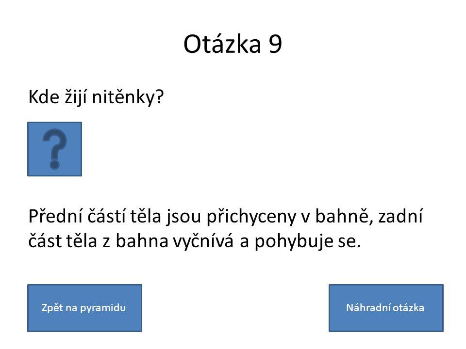 Otázka 9 Kde žijí nitěnky.