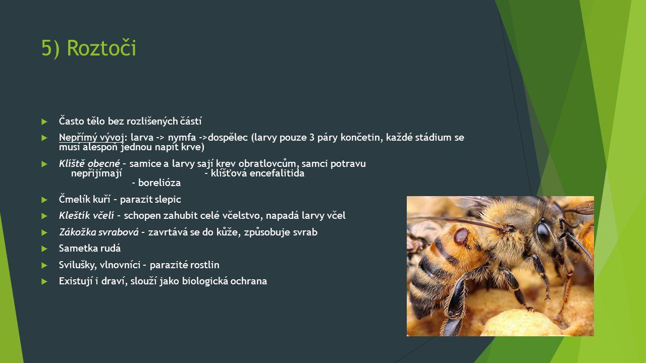 5) Roztoči  Často tělo bez rozlišených částí  Nepřímý vývoj: larva -> nymfa ->dospělec (larvy pouze 3 páry končetin, každé stádium se musí alespoň jednou napít krve)  Klíště obecné – samice a larvy sají krev obratlovcům, samci potravu nepřijímají - klíšťová encefalitida - borelióza  Čmelík kuří – parazit slepic  Kleštík včelí – schopen zahubit celé včelstvo, napadá larvy včel  Zákožka svrabová – zavrtává se do kůže, způsobuje svrab  Sametka rudá  Svilušky, vlnovníci – parazité rostlin  Existují i draví, slouží jako biologická ochrana
