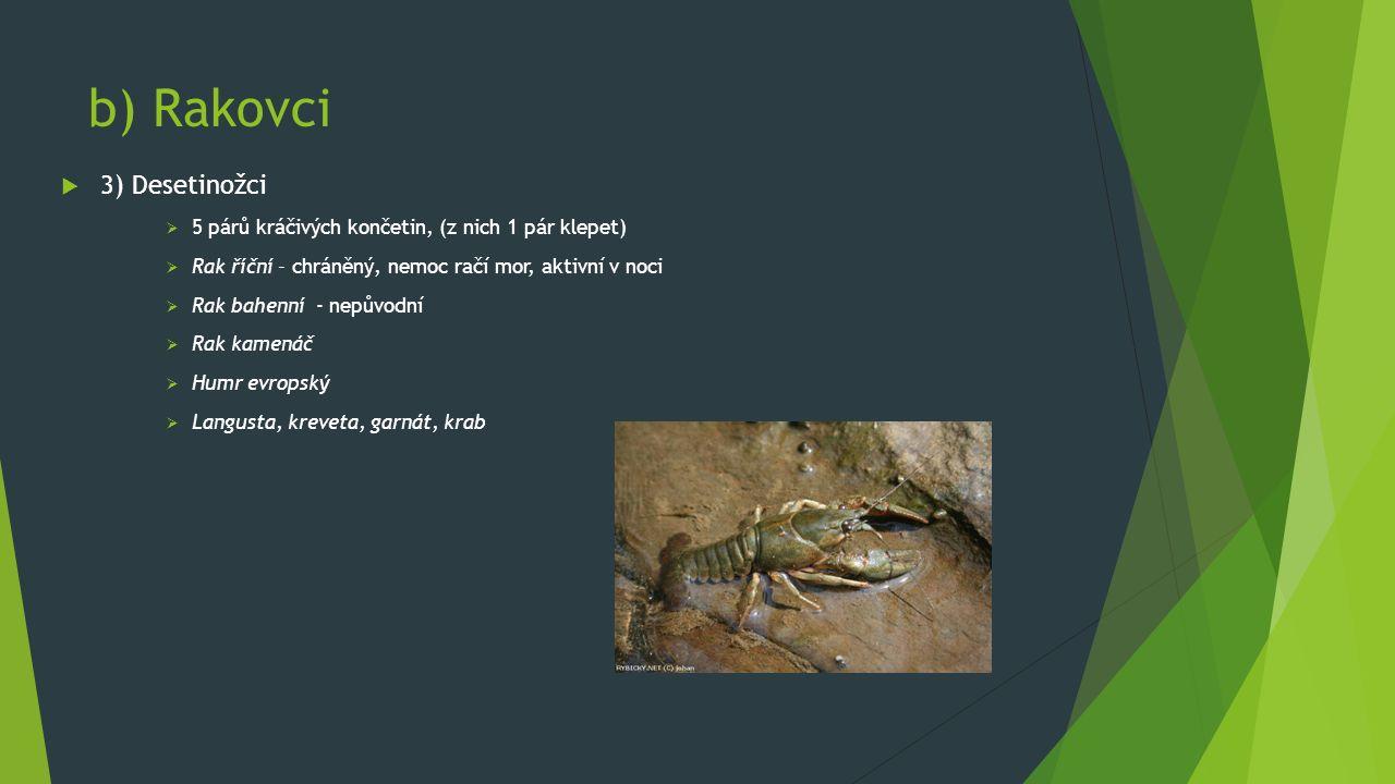 b) Rakovci  3) Desetinožci  5 párů kráčivých končetin, (z nich 1 pár klepet)  Rak říční – chráněný, nemoc račí mor, aktivní v noci  Rak bahenní - nepůvodní  Rak kamenáč  Humr evropský  Langusta, kreveta, garnát, krab