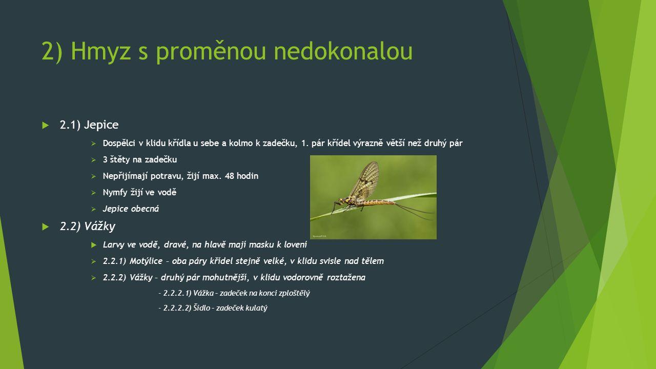 2) Hmyz s proměnou nedokonalou  2.1) Jepice  Dospělci v klidu křídla u sebe a kolmo k zadečku, 1. pár křídel výrazně větší než druhý pár  3 štěty n