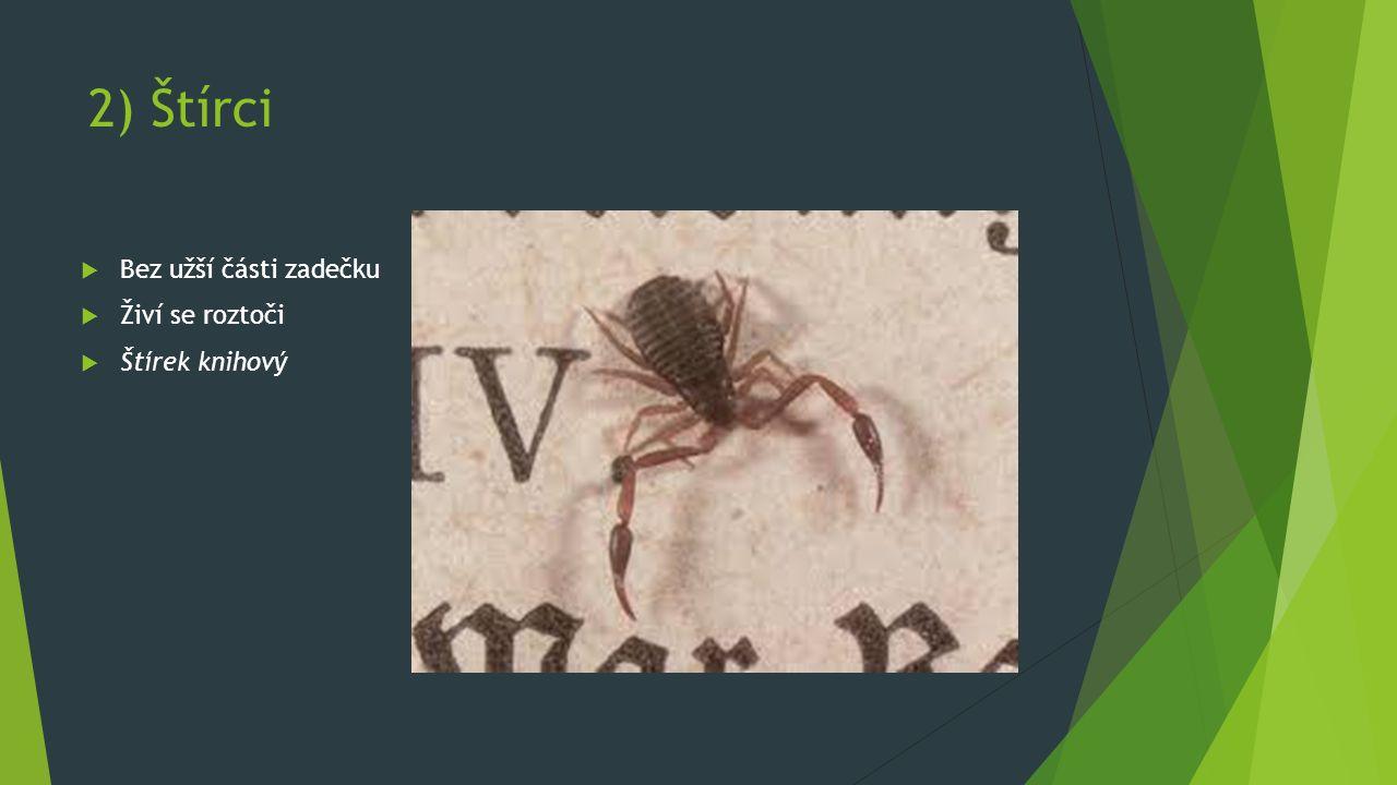 2) Štírci  Bez užší části zadečku  Živí se roztoči  Štírek knihový