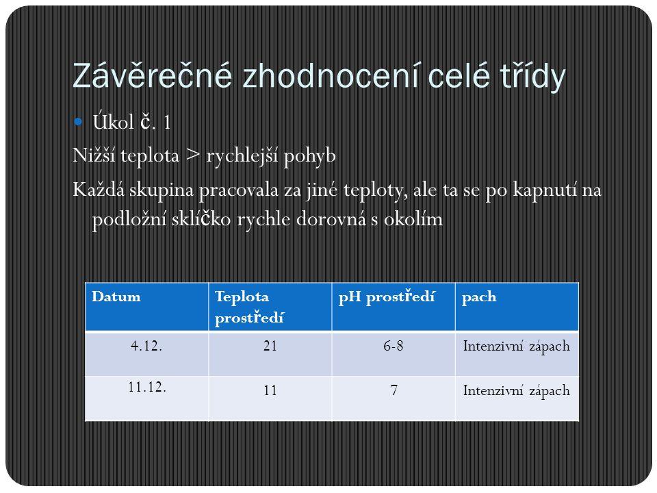 Závěrečné zhodnocení celé třídy Úkol č.