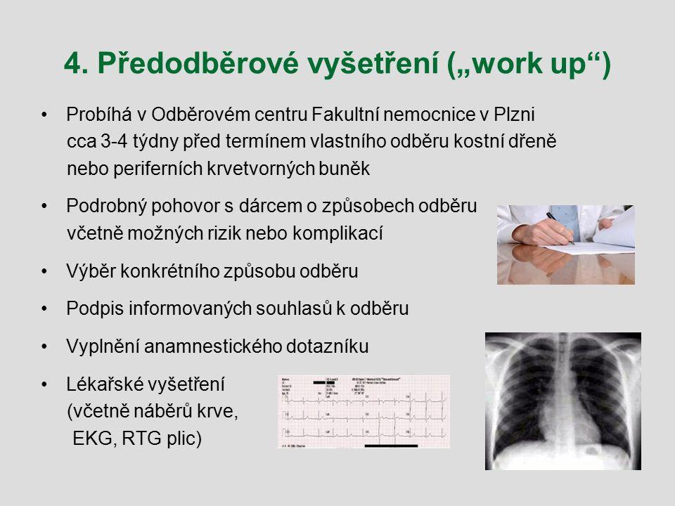 """4. Předodběrové vyšetření (""""work up"""") Probíhá v Odběrovém centru Fakultní nemocnice v Plzni cca 3-4 týdny před termínem vlastního odběru kostní dřeně"""