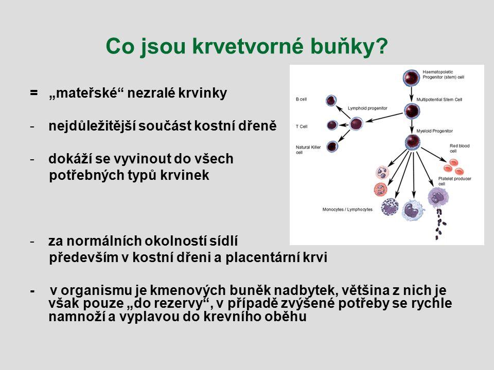 Můžete pomoci i Vy ! www.kostnidren.cz