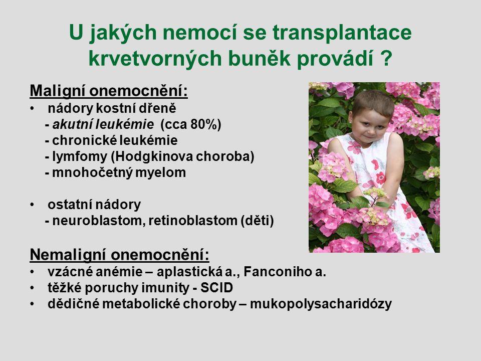 U jakých nemocí se transplantace krvetvorných buněk provádí ? Maligní onemocnění: nádory kostní dřeně - akutní leukémie (cca 80%) - chronické leukémie