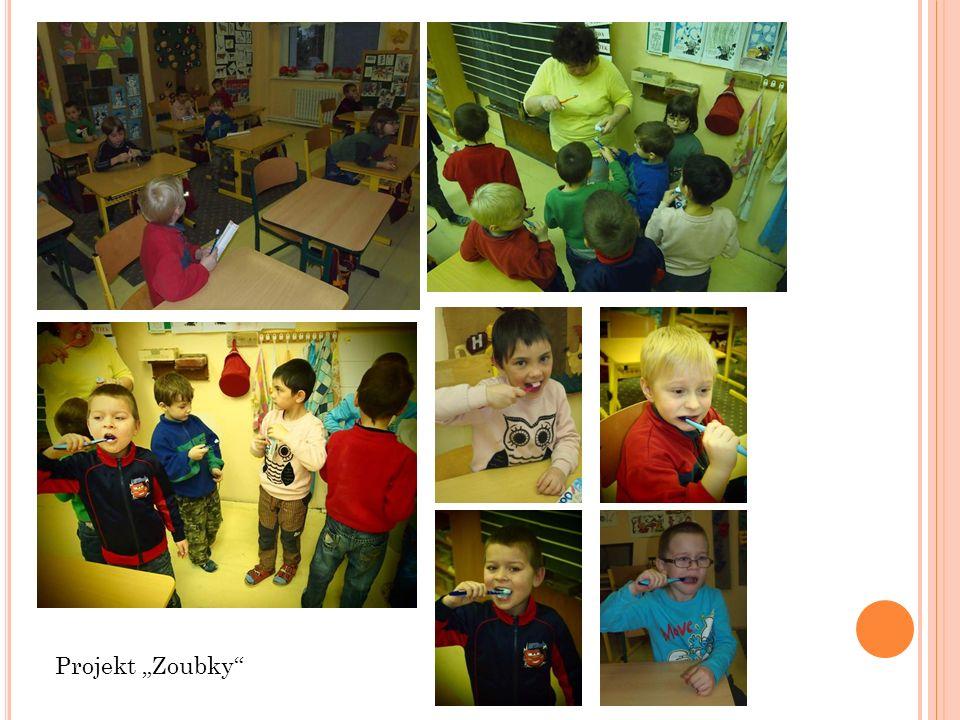"Projekt ""Zoubky"