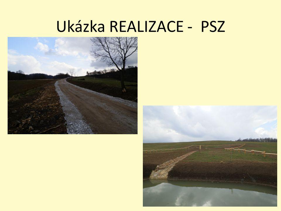 Ukázka REALIZACE - PSZ