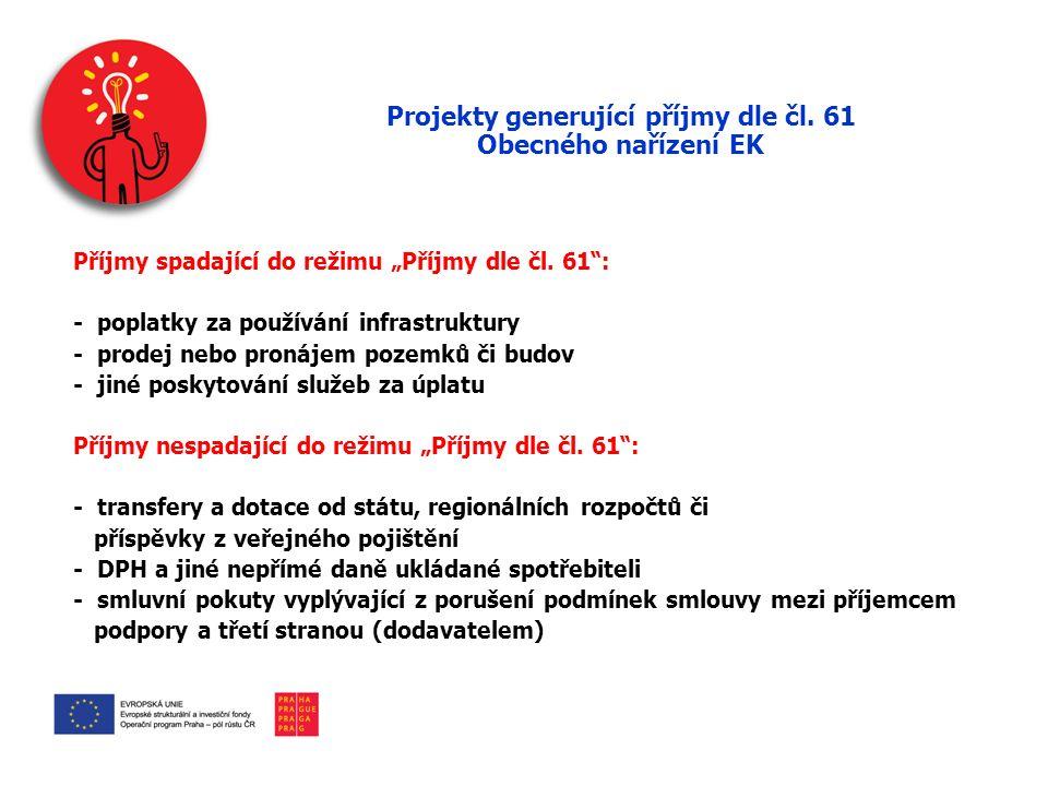 Projekty generující příjmy dle čl.