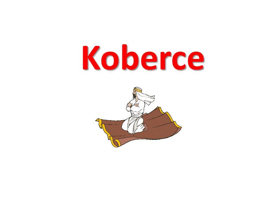 Koberce a textilní podlahové krytiny