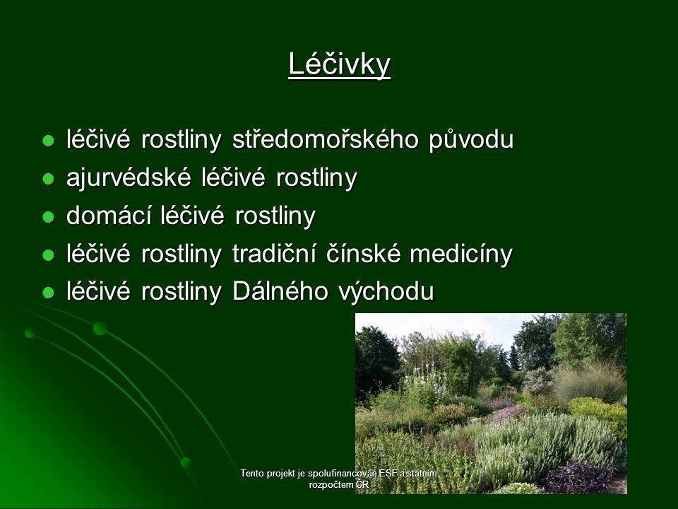 Léčivky léčivé rostliny středomořského původu léčivé rostliny středomořského původu ajurvédské léčivé rostliny ajurvédské léčivé rostliny domácí léčiv