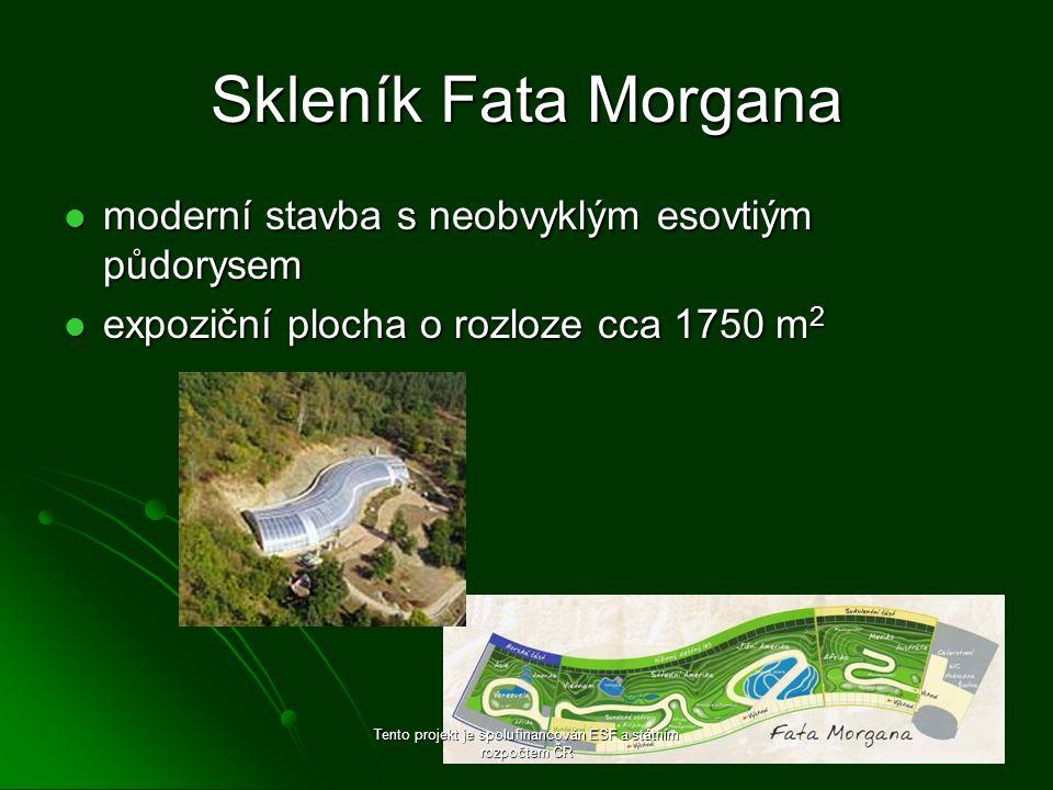 Skleník Fata Morgana moderní stavba s neobvyklým esovtiým půdorysem moderní stavba s neobvyklým esovtiým půdorysem expoziční plocha o rozloze cca 1750 m 2 expoziční plocha o rozloze cca 1750 m 2 Tento projekt je spolufinancován ESF a státním rozpočtem ČR