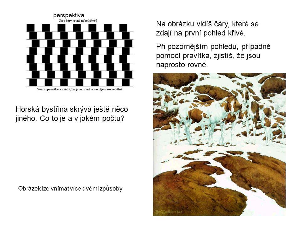 Na obrázku vidíš čáry, které se zdají na první pohled křivé. Při pozornějším pohledu, případně pomocí pravítka, zjistíš, že jsou naprosto rovné. Horsk