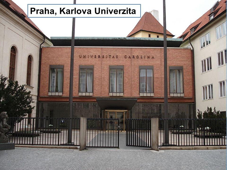 Katedrála sv. Víta Praha, Karlova Univerzita