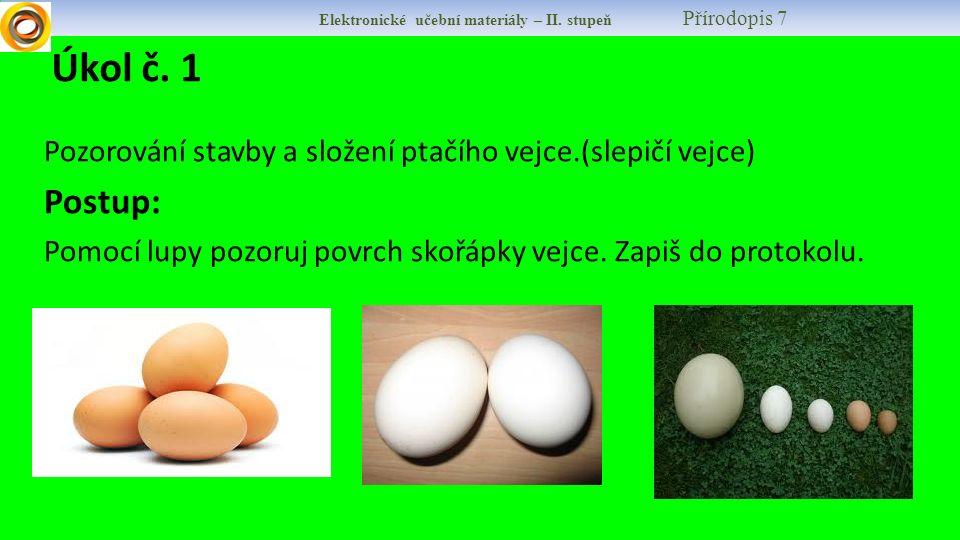 Elektronické učební materiály – II. stupeň Přírodopis 7 Pozorování stavby a složení ptačího vejce.(slepičí vejce) Postup: Pomocí lupy pozoruj povrch s