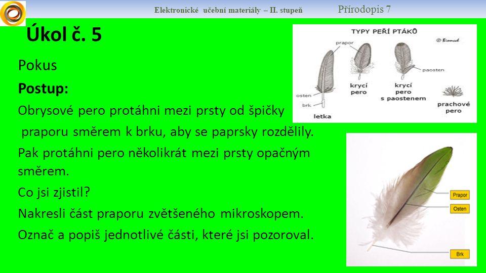 Elektronické učební materiály – II. stupeň Přírodopis 7 Úkol č. 5 Pokus Postup: Obrysové pero protáhni mezi prsty od špičky praporu směrem k brku, aby