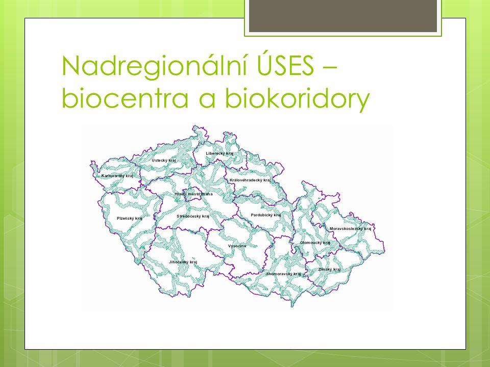 Nadregionální ÚSES – biocentra a biokoridory