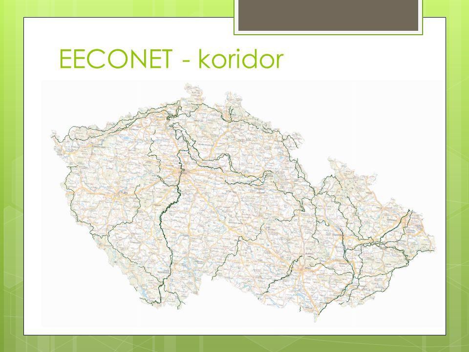 EECONET - koridor