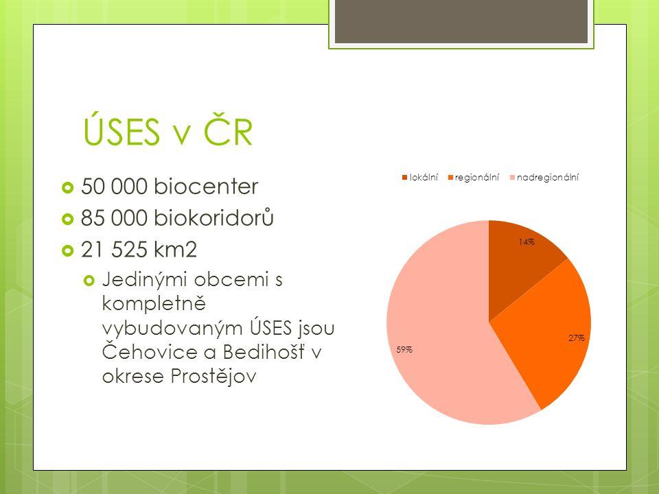 ÚSES v ČR  50 000 biocenter  85 000 biokoridorů  21 525 km2  Jedinými obcemi s kompletně vybudovaným ÚSES jsou Čehovice a Bedihošť v okrese Prostějov