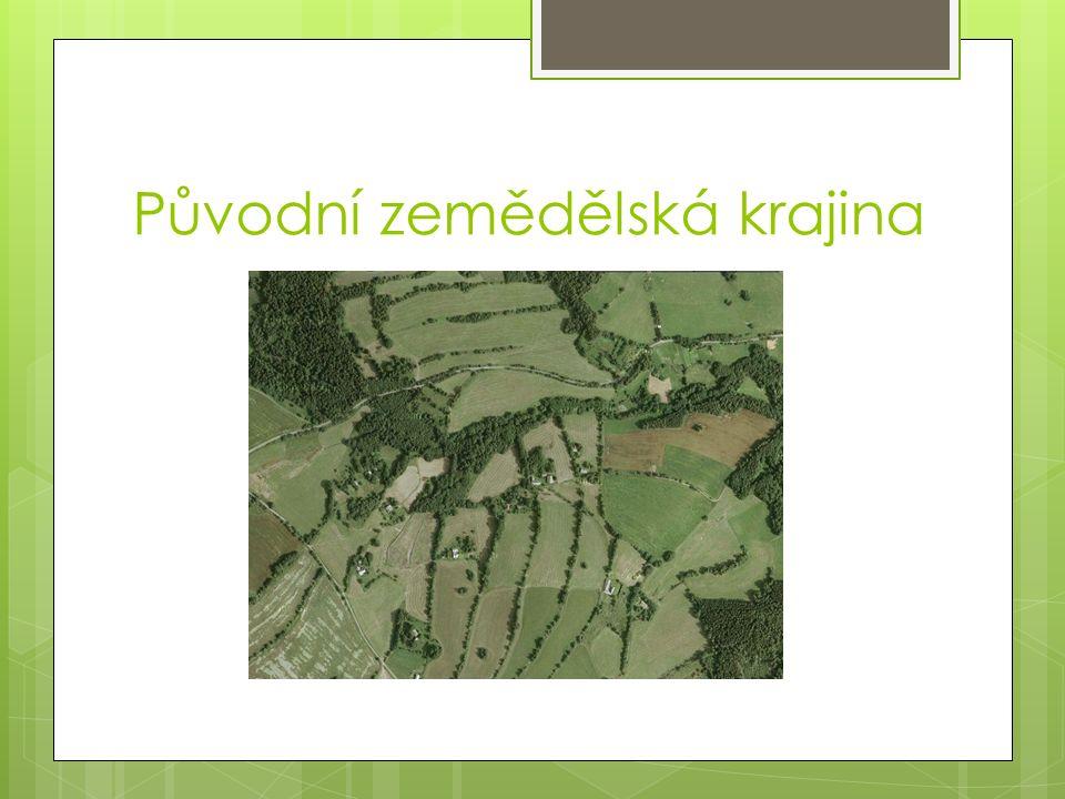 Původní zemědělská krajina