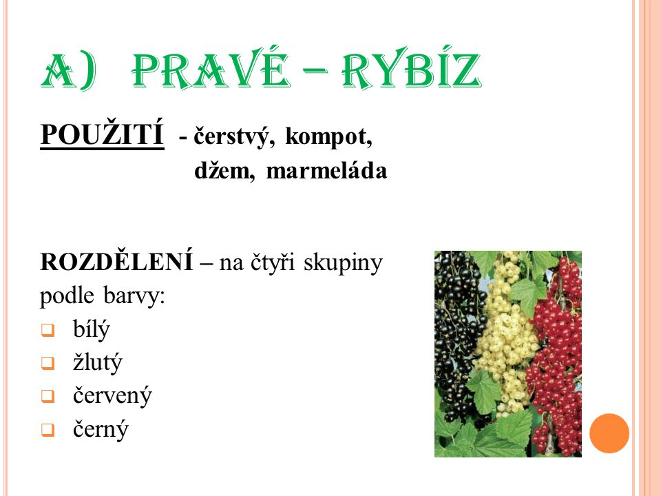 a) PRAVÉ – RYBÍZ POUŽITÍ - čerstvý, kompot, džem, marmeláda ROZDĚLENÍ – na čtyři skupiny podle barvy:  bílý  žlutý  červený  černý