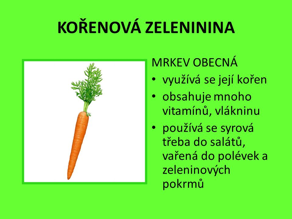 KOŘENOVÁ ZELENININA MRKEV OBECNÁ využívá se její kořen obsahuje mnoho vitamínů, vlákninu používá se syrová třeba do salátů, vařená do polévek a zeleninových pokrmů
