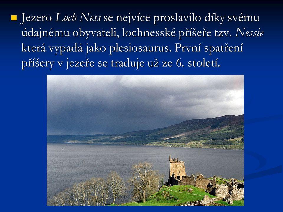 Jezero Loch Ness se nejvíce proslavilo díky svému údajnému obyvateli, lochnesské příšeře tzv.