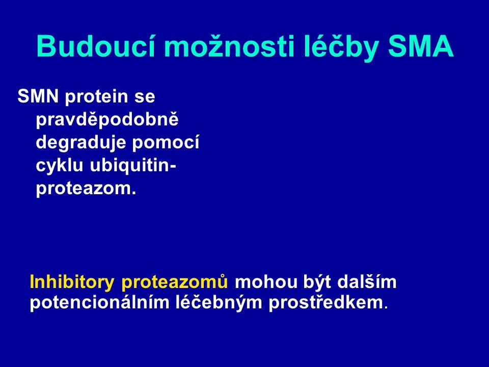 Budoucí možnosti léčby SMA SMN protein se pravděpodobně degraduje pomocí cyklu ubiquitin- proteazom.