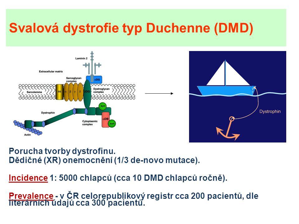 Svalová dystrofie typ Duchenne (DMD) Porucha tvorby dystrofinu.