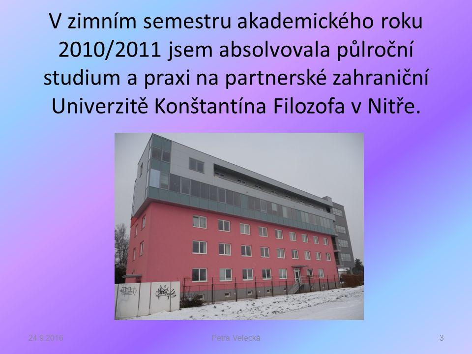 V zimním semestru akademického roku 2010/2011 jsem absolvovala půlroční studium a praxi na partnerské zahraniční Univerzitě Konštantína Filozofa v Nitře.